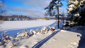 Long shadows on the lake Niini