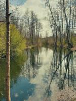 April in reflections V