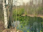 April reflections VI