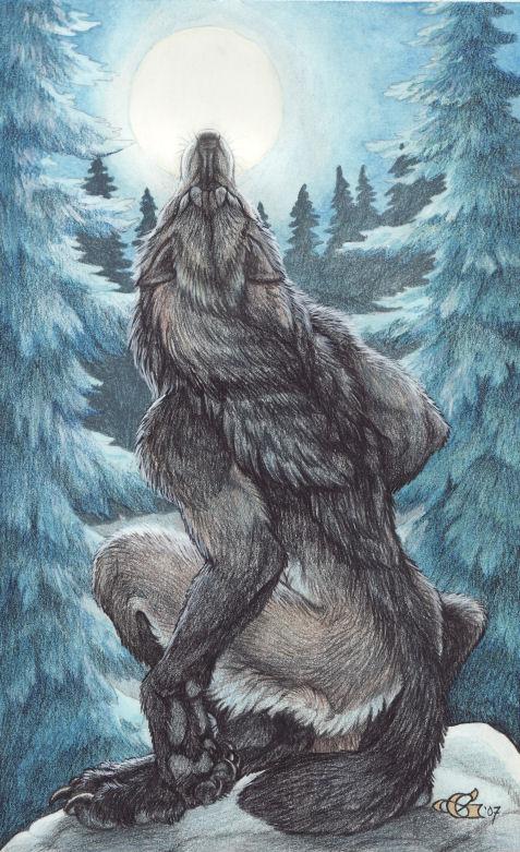 Cambia Formas : Garous .Christy Grandjean Moon_Howl_by_Goldenwolf