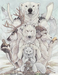 Arctic Treasures