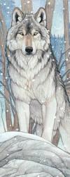 Spirit of the Wolf by Goldenwolf