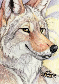 King of Trouble - ACEO