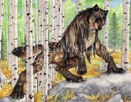 Echo by Goldenwolf