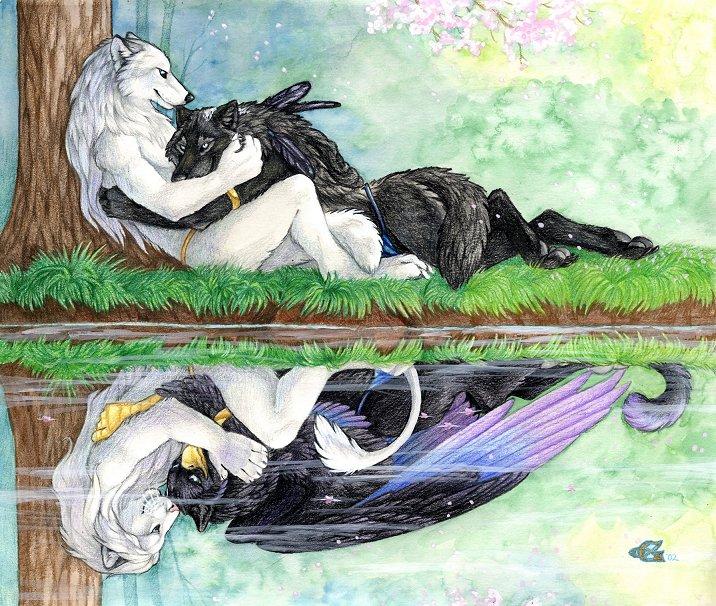 Фото черно белый волк
