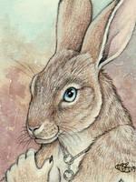 Foxxz 'Bunny' Badge by Goldenwolf