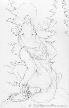 Moon Howl Drawing
