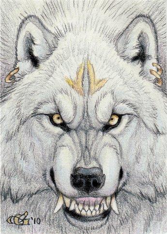 Cambia Formas : Garous .Christy Grandjean Werewolf_Smile_ACEO_by_Goldenwolf