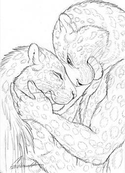 Cuddly Couples - Amur Leopards