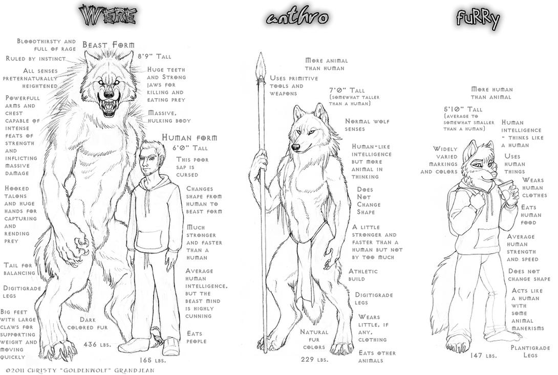 Scribble Drawing Definition : My definitions by goldenwolf on deviantart