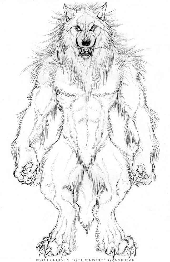How To Draw A Cartoon Werewolf, Step by Step, Drawing ...
