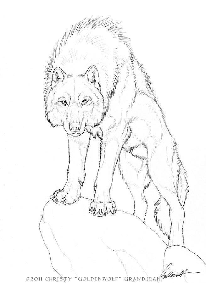 adonis by goldenwolf on deviantart