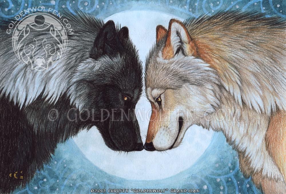 Werewolf Mates Drawing