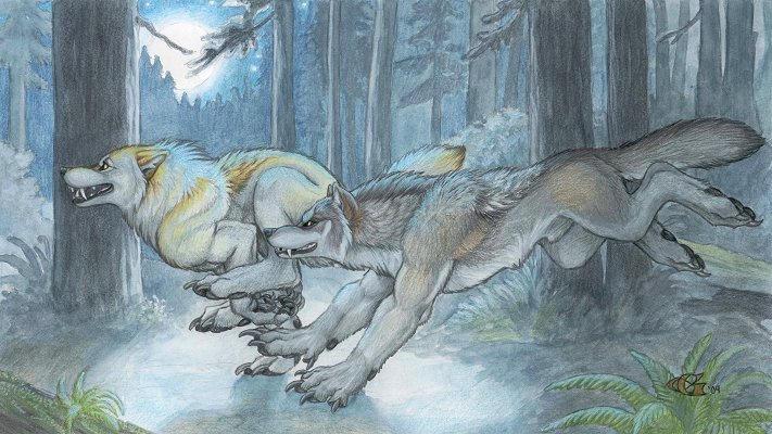 First Run by Goldenwolf