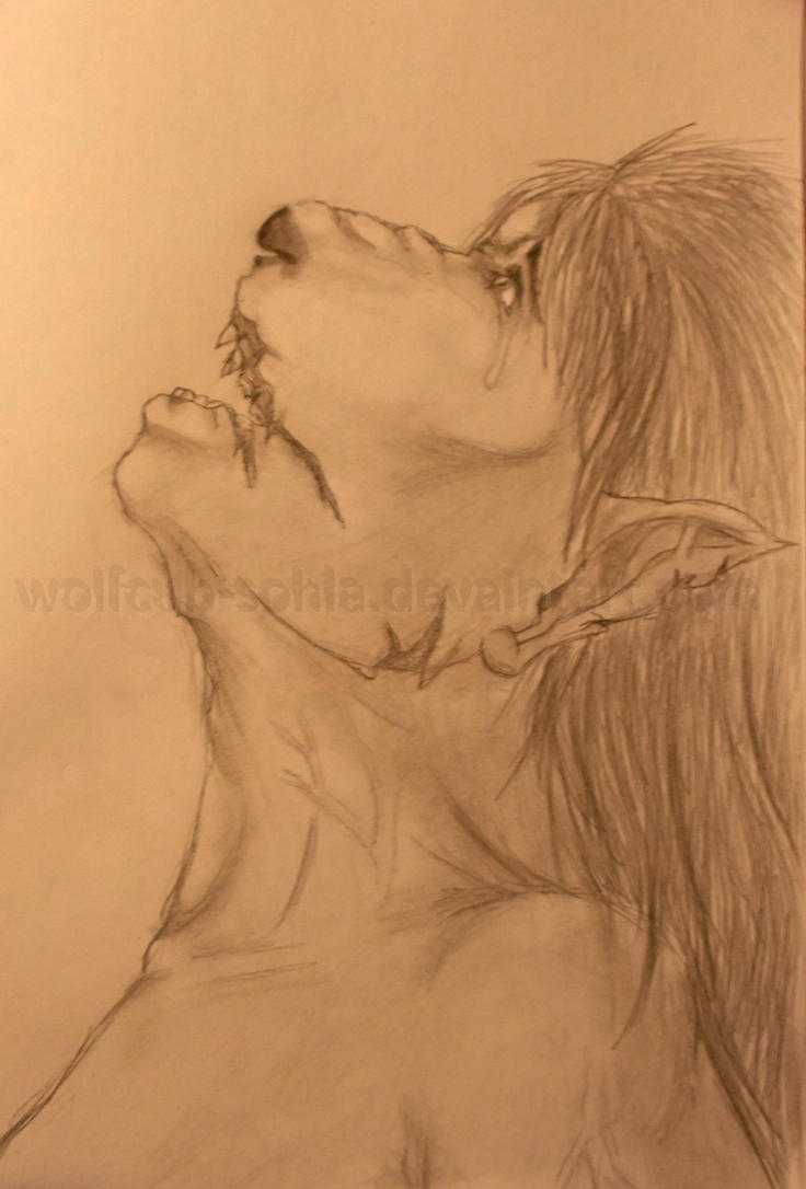 I hate change by Wolfcub-Sohla