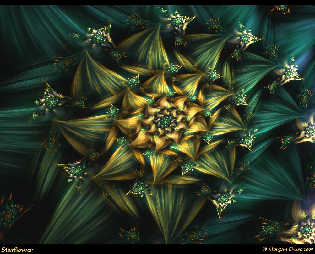 Starflower by Alterren