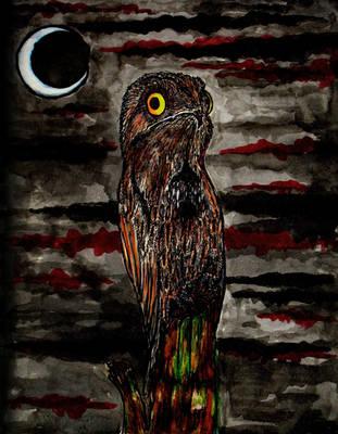 Ojos Nocturnos... by HieronyusBerruecos
