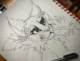 Sketch (Day 1)