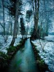 Forest creek n snow