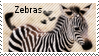 Zebra stamp by muddyputty