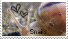 Snail Stamp by muddyputty