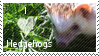 hedgehog stamp by muddyputty