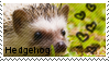 hedgehog stamp 2 by muddyputty