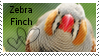 Zebra finch stamp by muddyputty