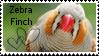 Zebra finch stamp by muddyputty
