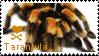 Tarantula stamp by muddyputty