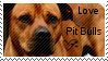 Pit bull stamp by muddyputty