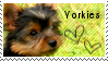 Yorkie stamp by muddyputty