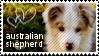 Australian Shepherd stamp by muddyputty