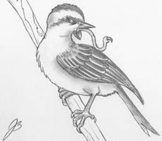 Evil Sparrow by TheMightyGorga