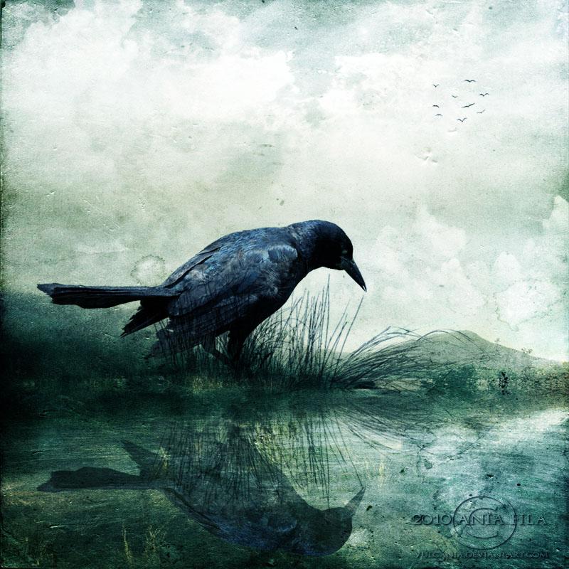 http://fc08.deviantart.net/fs71/f/2010/270/e/7/the_raven_by_vulcania-d2zl86x.jpg