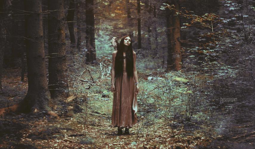 Sophia and the Pilgrim by xBassxHarmingx