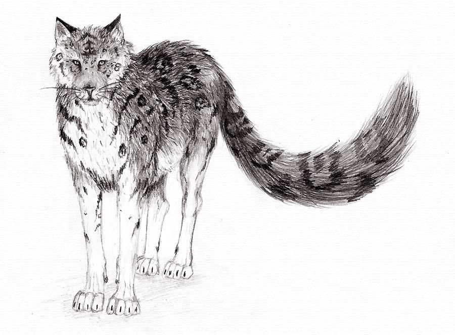 Ultimate Predator by tigerXwolf on DeviantArt