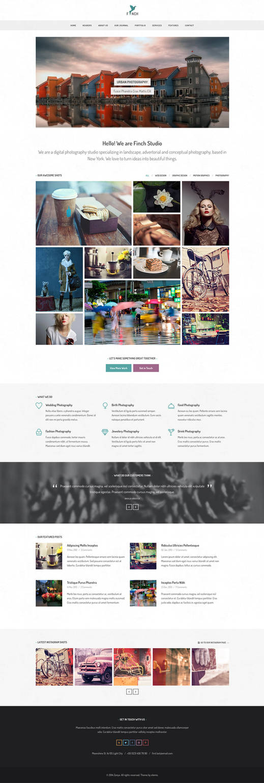 Finch Free Homepage PSD