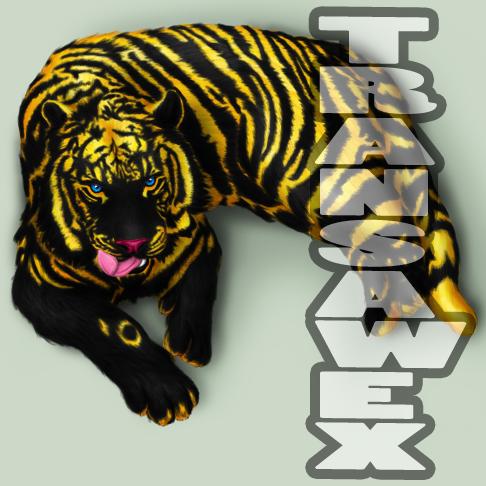transawex's Profile Picture