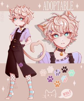 [ADOPT CLOSED] cat boy!