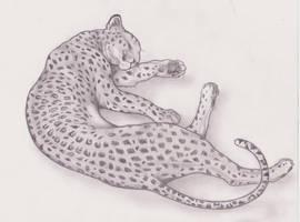 Leopardo by EleEstel