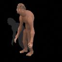Darwin's Hunchback