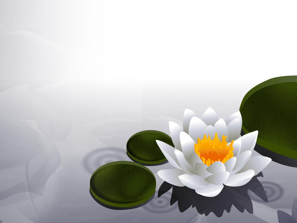 Lotus wallpaper by brontosaurus on deviantart mightylinksfo Choice Image