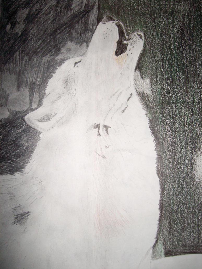 wolf half and half by NightShrowd7-17