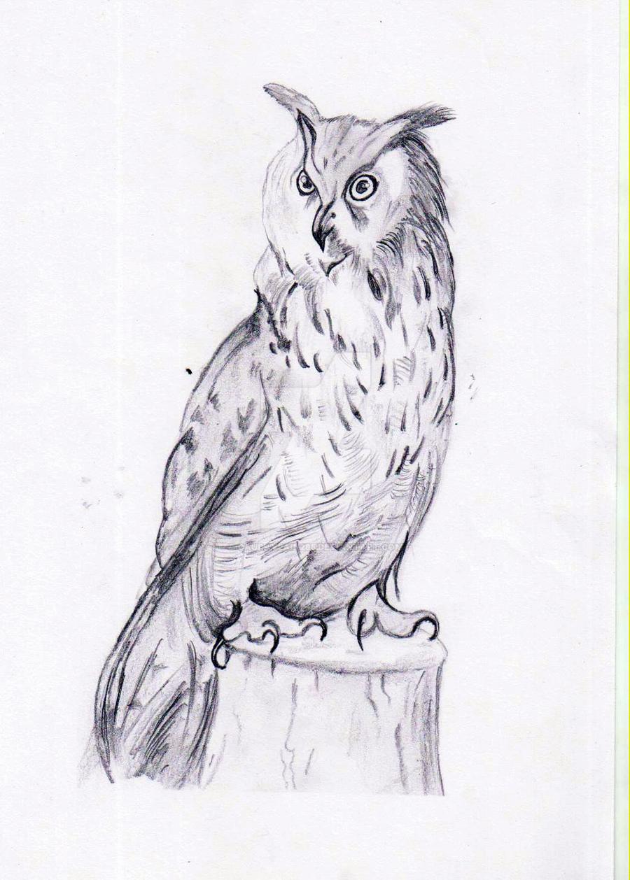 OWL by gauravjain285