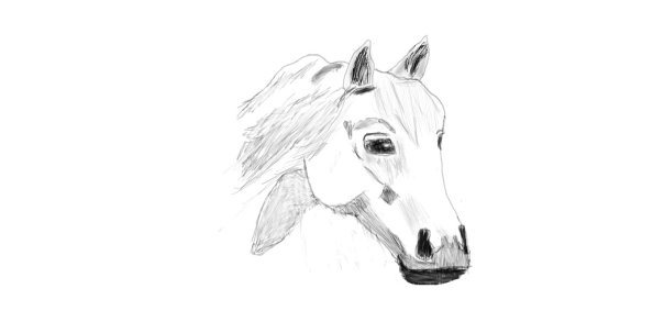 Horse by oyeboy94