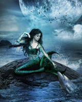 Mermaid And Dolphin by gigimoshik