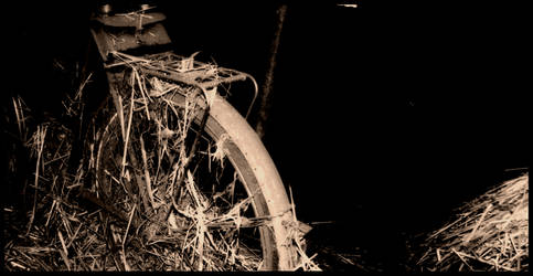 old bicycle by linscheen