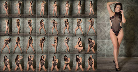 Stock: Bree Addams Sheer Lace - 33 Images