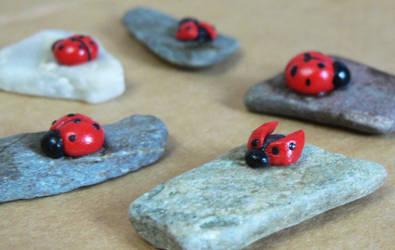 A Souvenirs: Ladybug by designandberries